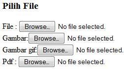 Membatasi Tipe Upload File