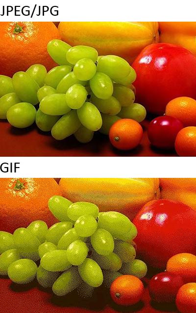 Mengenal Lebih Dalam Perbedaan PNG, JPEG dan GIF