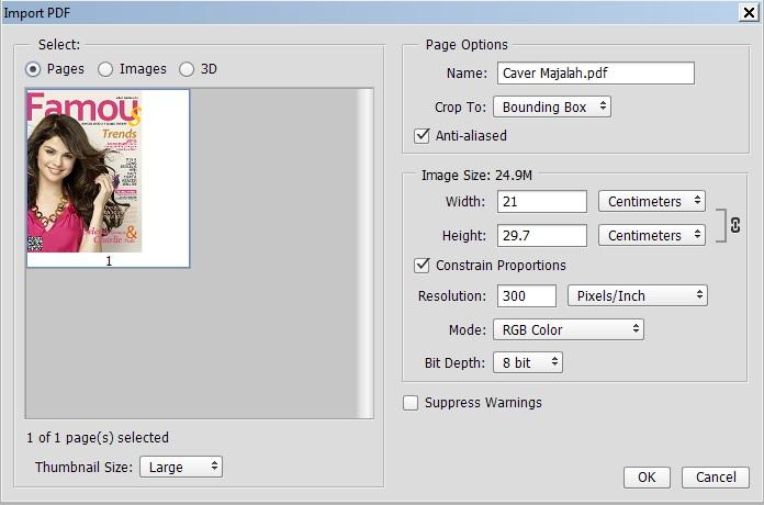 Merubah File Pdf Menjadi Jpg Di Photoshop